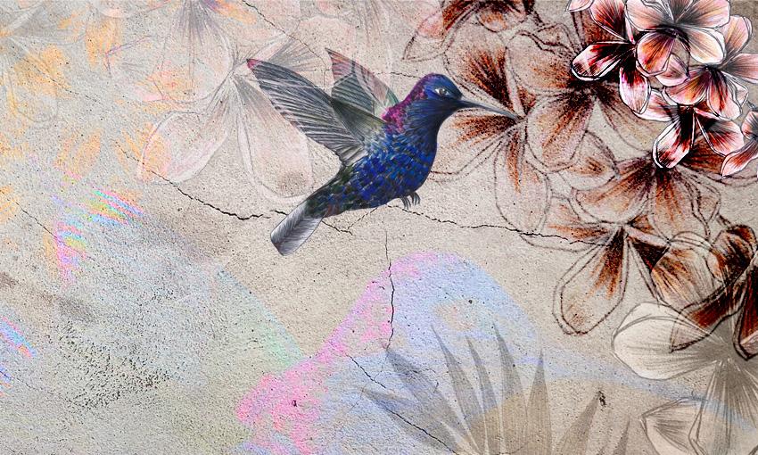 dettaglio carta da parati colibri