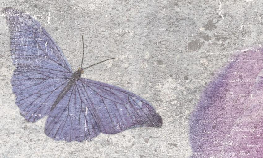 dettaglio carta da parati farfalle