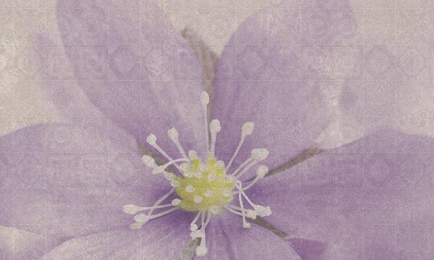 dettaglio carta da parati a fiori design