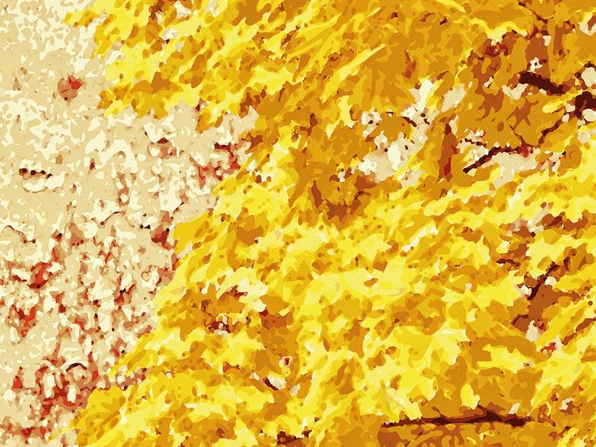 Dettaglio di colore per foglie d'autunno