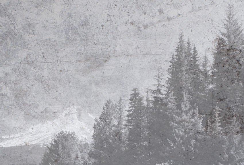 dettaglio della carta da parati lago