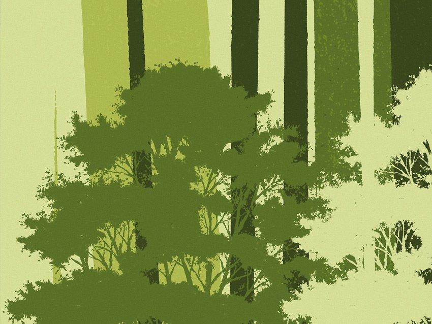 Dettaglio della carta da parati rami e foglie