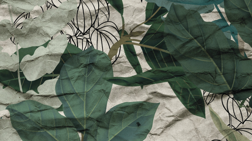 dettaglio carta da parati tropicale vintage