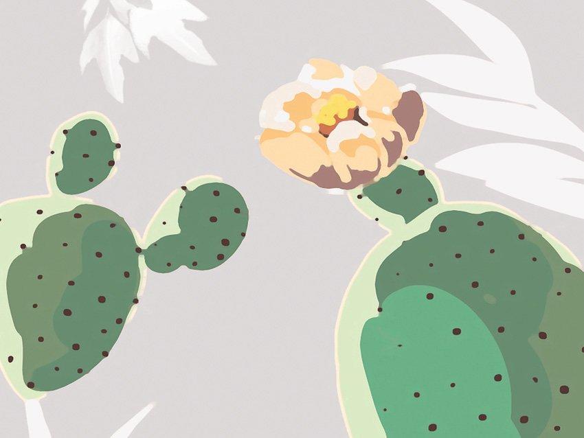 dettaglio carta da parati cactus