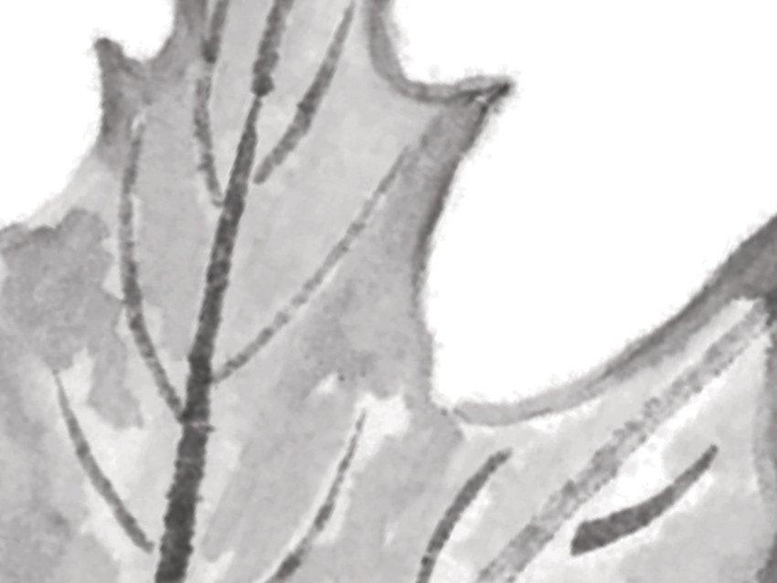 dettaglio carta da parati foglie che cadono