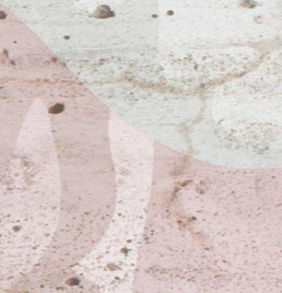 dettaglio carta da parati rose e cemento