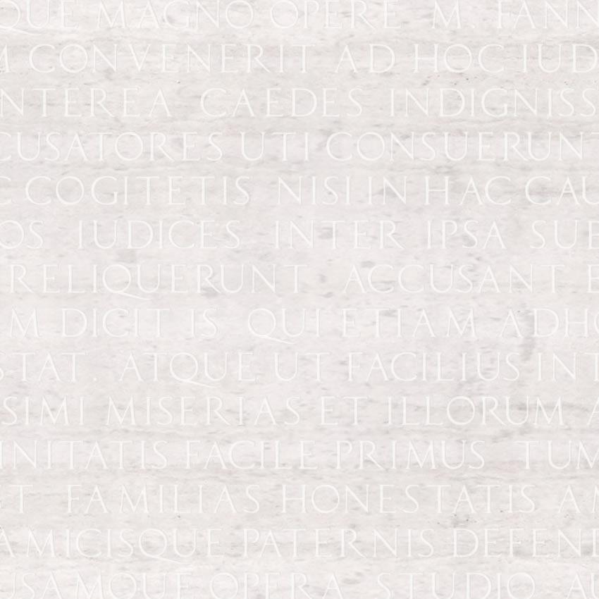 dettaglio carta da parati latino