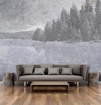 specchio d'acqua con bosco e monti