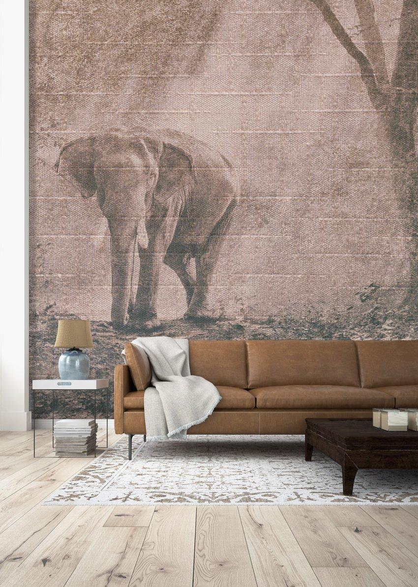 Carta Da Parati Immagini elefante