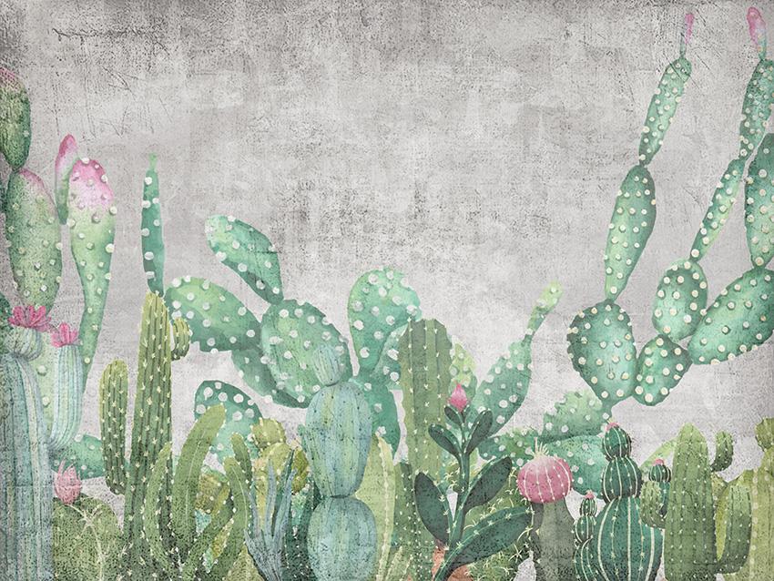 cactus carta da parati