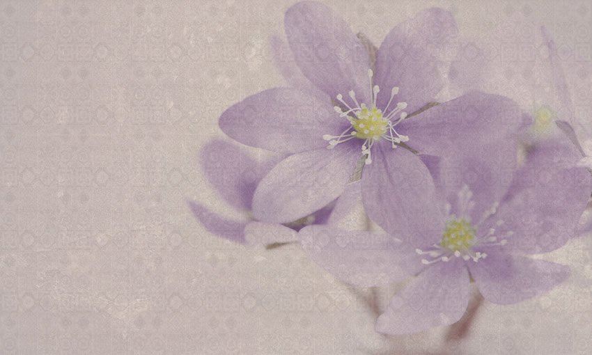 fiori design carta da parati