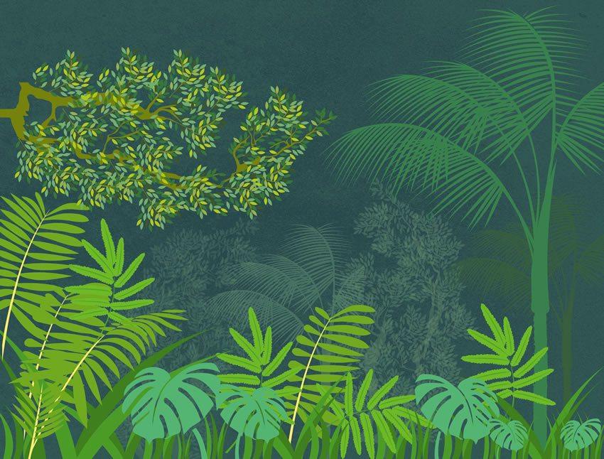 carta da parati boscaglia verde