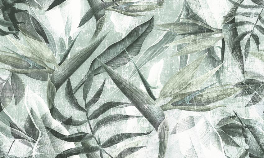 pianta esotica carta da parati