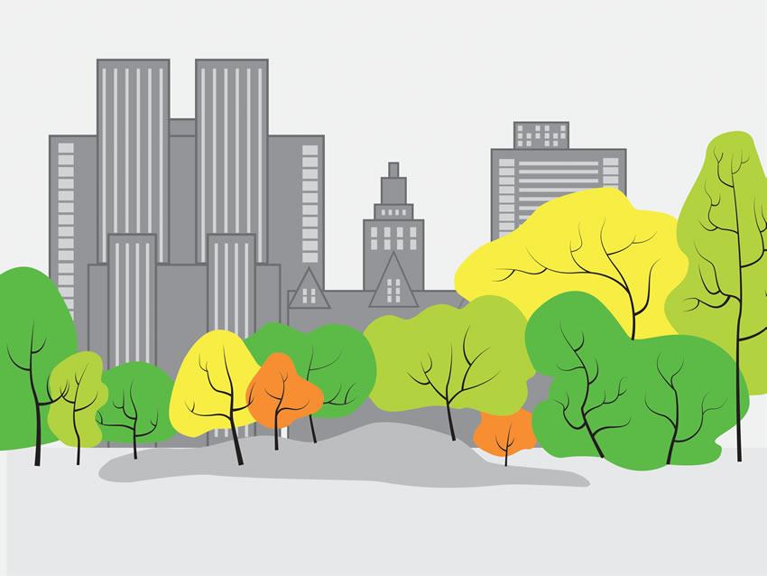 central park carta da parati