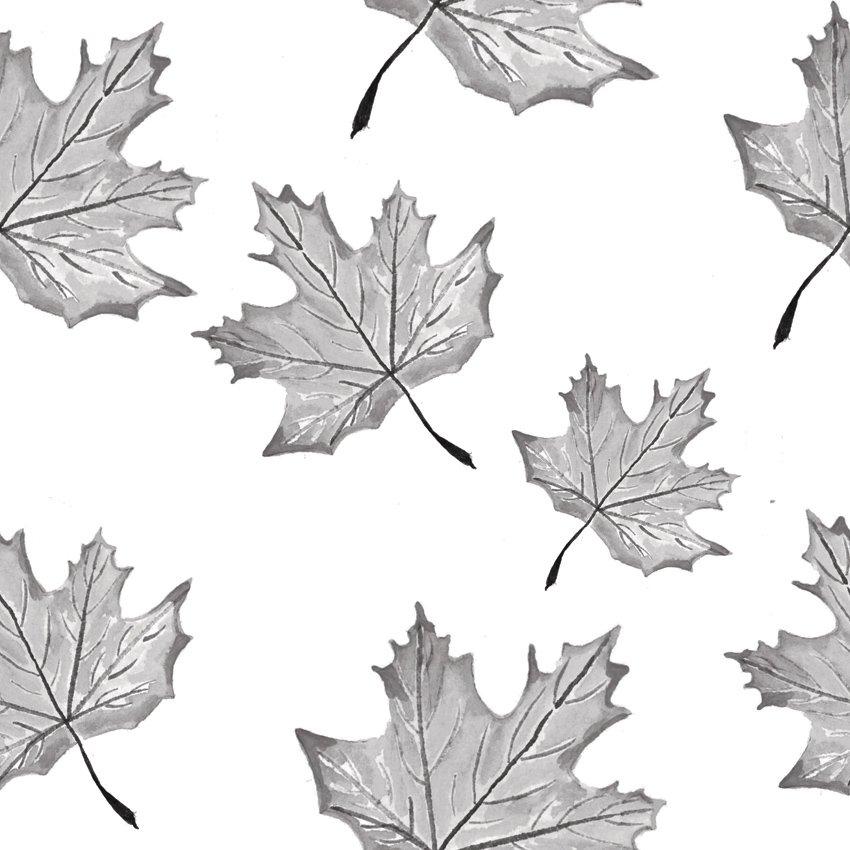 foglie che cadono carta da parati