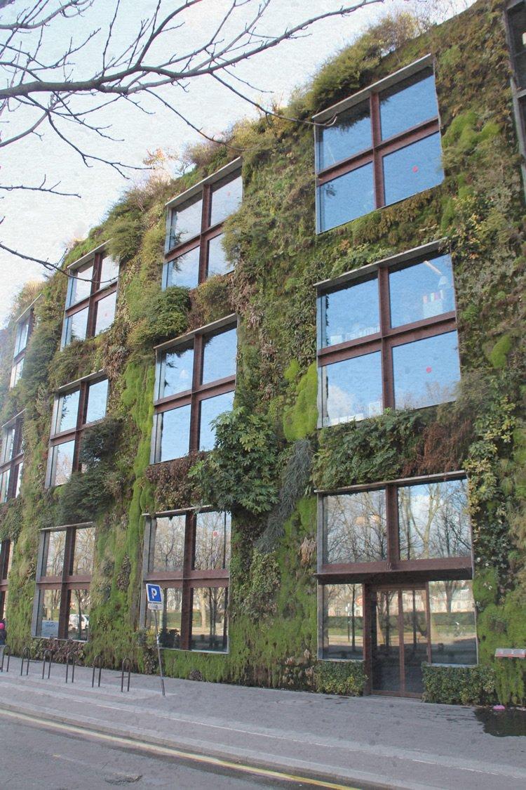 palazzina con muro verde